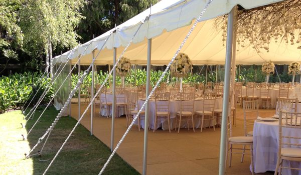 Pole Marquee – Guy Ropes & Pegs